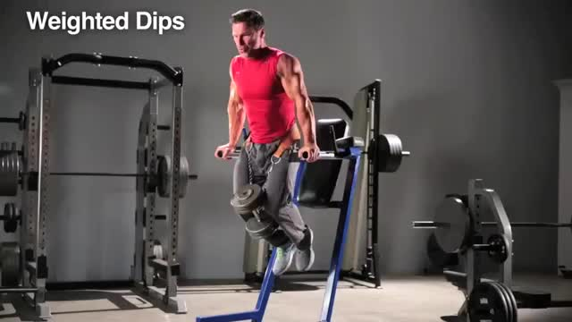 Weighted Chest Dip demonstration