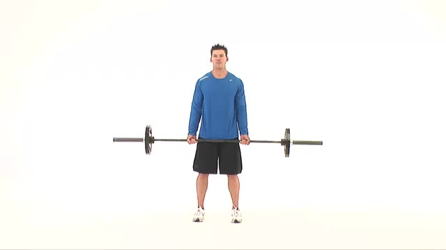 Barbell Biceps Curl demonstration
