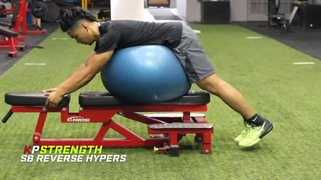 Male Reverse Hyper-extension (on stability ball) demonstration