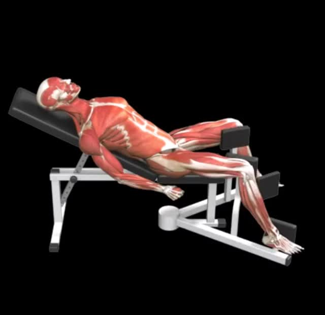 Lever Lying Hip Adduction demonstration