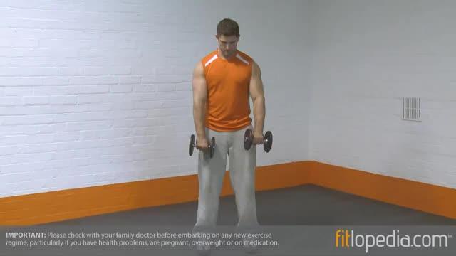 Male Standing Alternate Dumbbell Reverse Curl demonstration