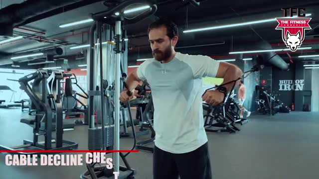 Male Cable Standing Decline Chest Press demonstration