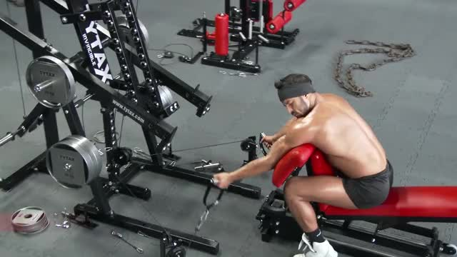 Lever Alternating Preacher Curl (arms high) demonstration