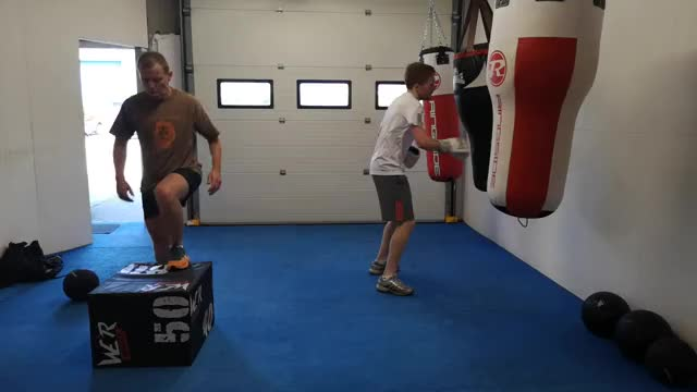 Sprint Punches demonstration
