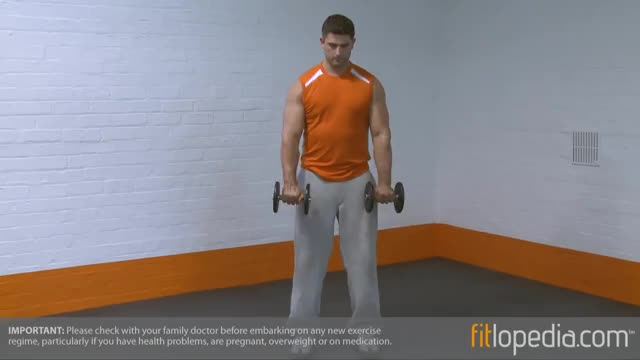 Standing Dumbbell Reverse Curl demonstration
