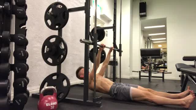 Rear Delt Inverted Row (high bar) demonstration