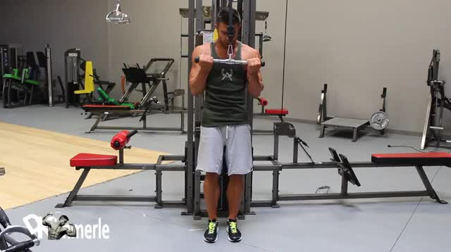 Reverse Grip Triceps Pushdown demonstration