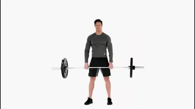 Barbell Hang Pull demonstration