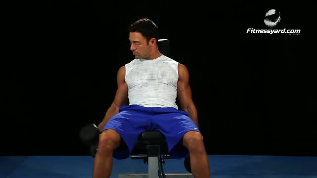 Seated Dumbbell Biceps Curl demonstration