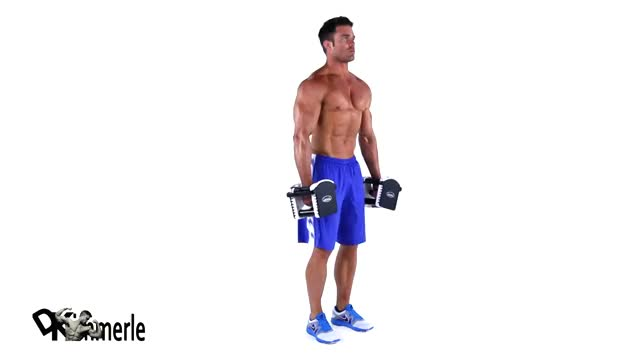 Dumbbell Squat demonstration