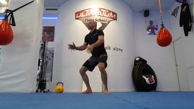 Bodyweight Jump Squat demonstration
