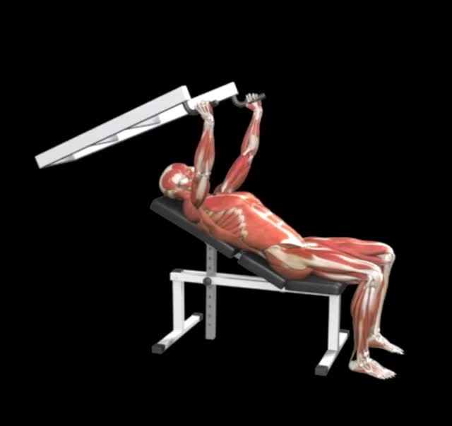 Lever Close Grip Incline Bench Press demonstration