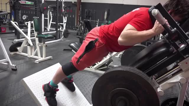 Reverse hack Squat demonstration