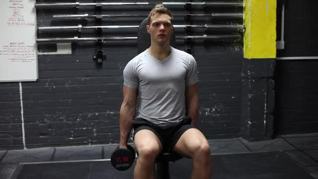 Male One Arm Seated Hammer Curl demonstration