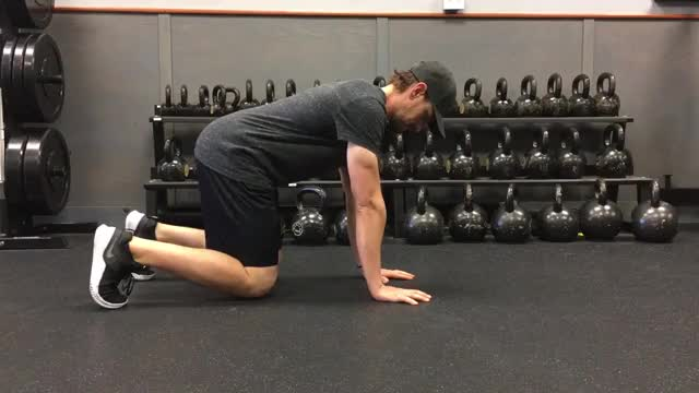 Bear Crawl Shoulder Tap demonstration
