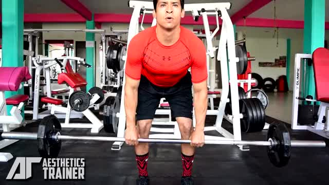 Barbell Close Grip Bent-over Row demonstration