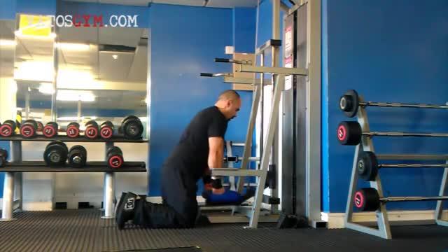 Sled Standing Triceps Dip demonstration