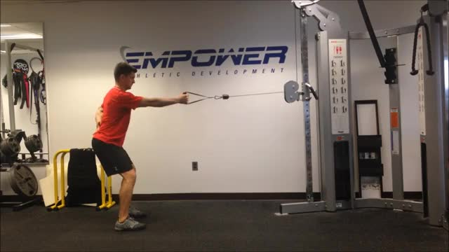 Male Cable Single-Arm Standing Row demonstration