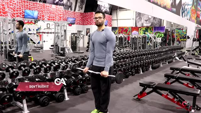 Male EZ Bar Reverse Grip Barbell Curl demonstration