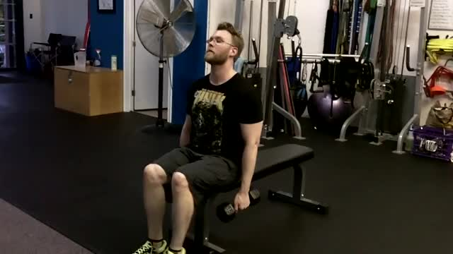 Male Seated Poliquin Raise demonstration