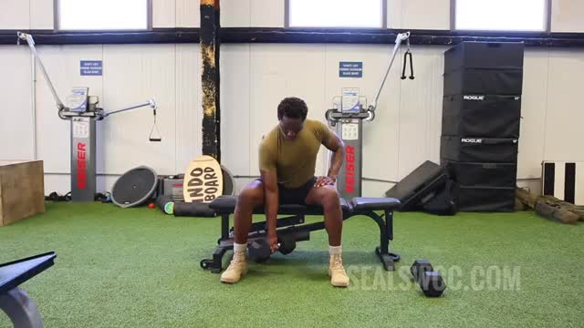 Male One Arm Seated Dumbbell Curl demonstration