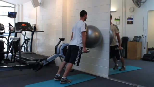 Male Exercise Ball On The Wall Calf Raise demonstration