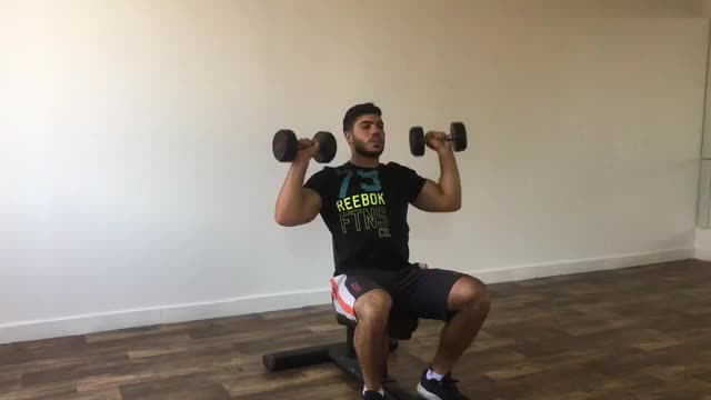 Alternate Seated Dumbbell Press demonstration