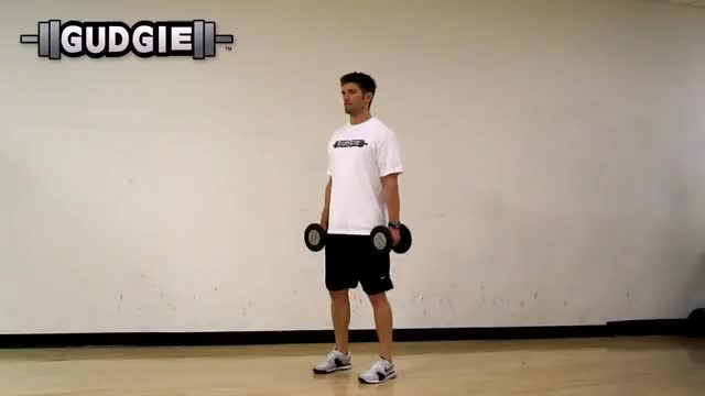 Weighted Jump Squat demonstration