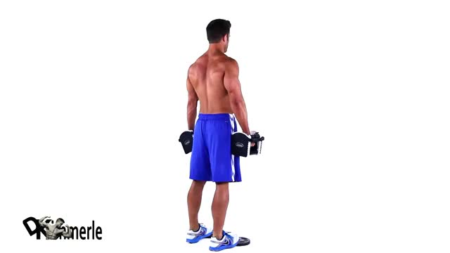 Calf Raise On A Dumbbell demonstration