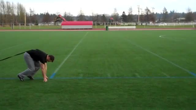 Weighted Sled Pull Sprint demonstration