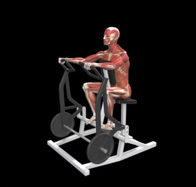 Lever Wide Grip Seated Row demonstration
