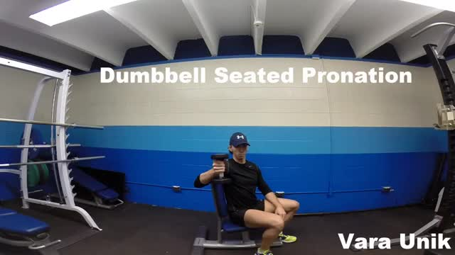 Male Dumbbell Seated Pronation demonstration
