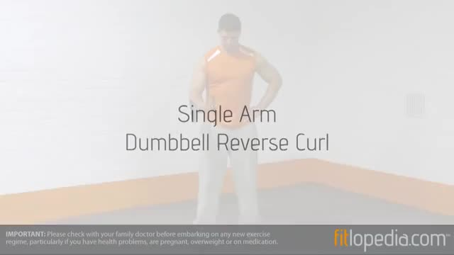 Male Standing One Arm Dumbbell Reverse Curl demonstration