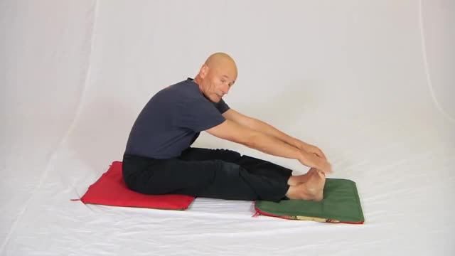 Seated Floor Hamstring Stretch demonstration