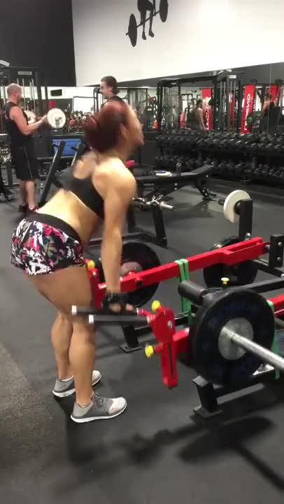 Lever Straight-back Straight-leg Deadlift (plate loaded) demonstration