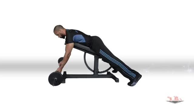 Male Reverse Grip Incline Bench Barbell Row demonstration