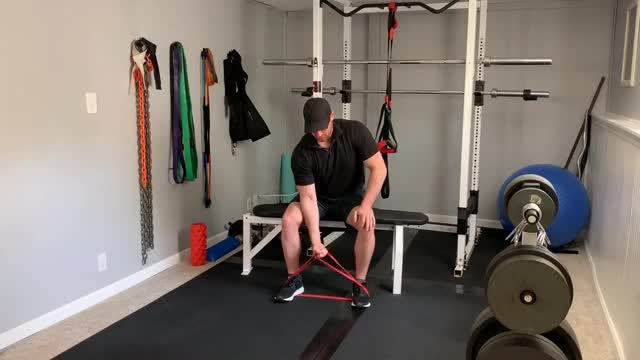 Kneeling Concentration Curl with Resistance Band demonstration
