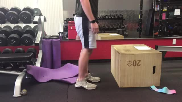 Step Up on Couch demonstration