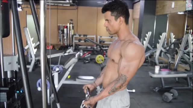 Cable Biceps Curl demonstration