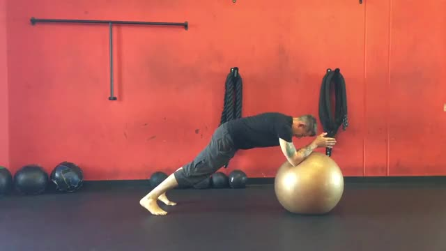 Stability Ball Mountain Climber demonstration
