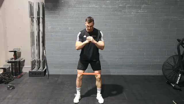 Bodyweight Squats with Band demonstration