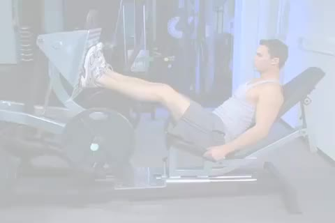 Lever Seated Leg Press demonstration