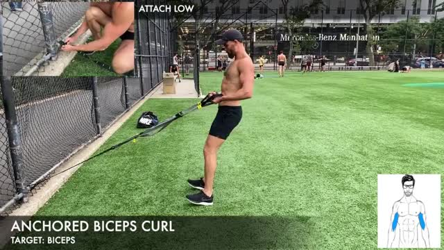 TRX Anchored Biceps Curl demonstration