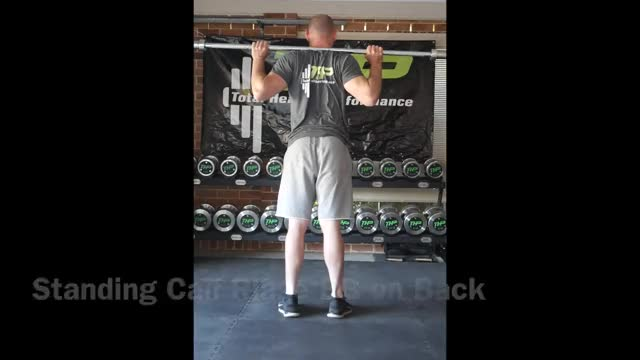 Standing Barbell Calf Raise on Floor demonstration