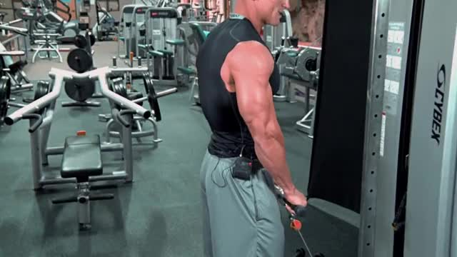 Male Cable Bar Reverse Curl demonstration