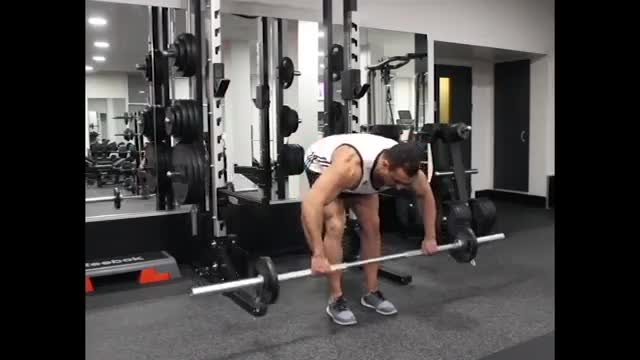 Standing Barbell Rear Delt Row demonstration